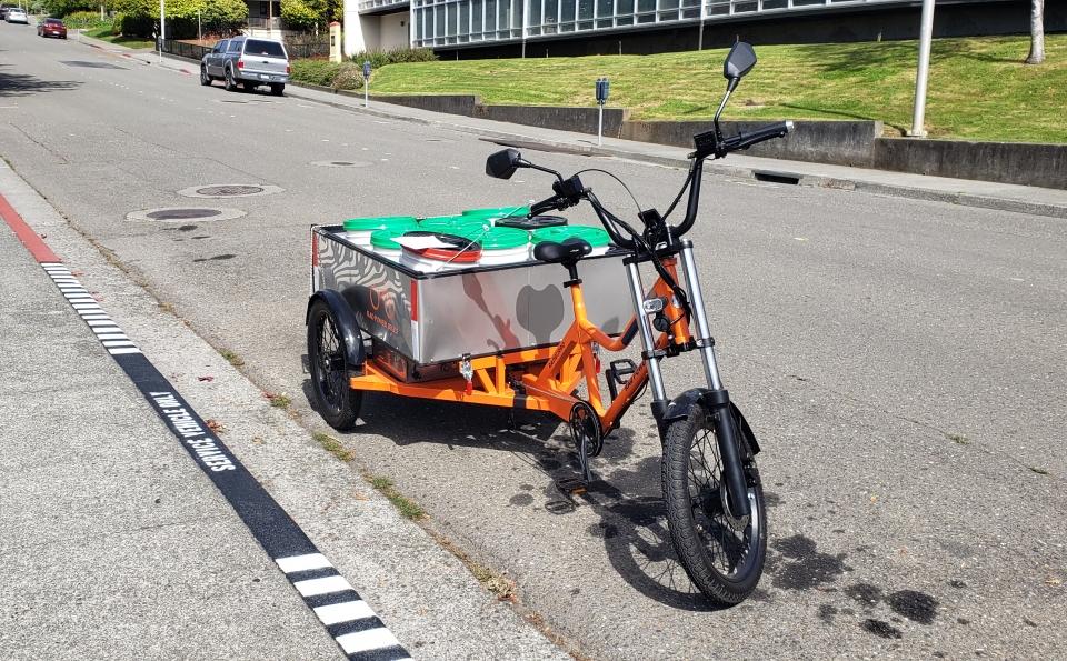The RadBurro E-Bike